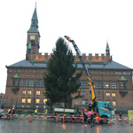 A Fassi F1150RA and the Christmas tree