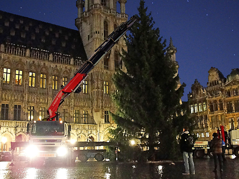 fassi-loader-crane-lift-tree-in-grand-place