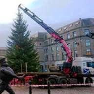 Fassi-Kran stellt Christbaum in Dundee auf